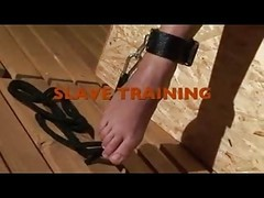 Slave, Train, Puppy slave training