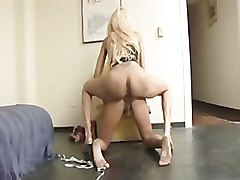 Ladyboy, This video is presented by ladyboy pussy paysite