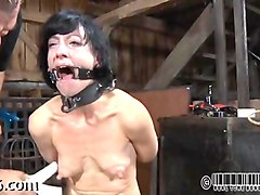 Babe, Facial, Electric torture