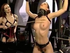 Bdsm, Domination, Group, Stockings domination