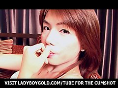 Ladyboy, Teen, Teen ladyboy wet dream 3dteen ladyboy wet dream 3d