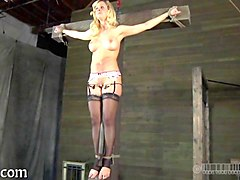 Blonde, Tied, Cuckold humiliation feet