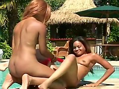 Foursome, Lesbian, Toys, Lesbians and