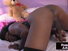 Ebony, Ass, Monster cock shemale solo