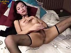Ladyboy, Ladyboy compilations india