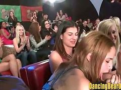 Amateur, Club, Orgy, Compilation dancing bear